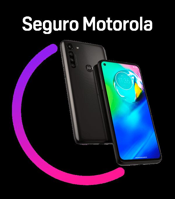 Seguro Motorola